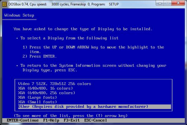 Screenshot of Display type selection.